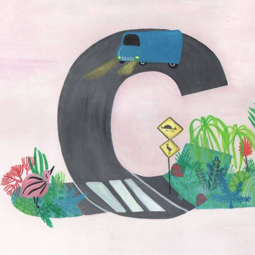 In a tropical forests the cassowary and her chick are crossing a dangerous road in letter C