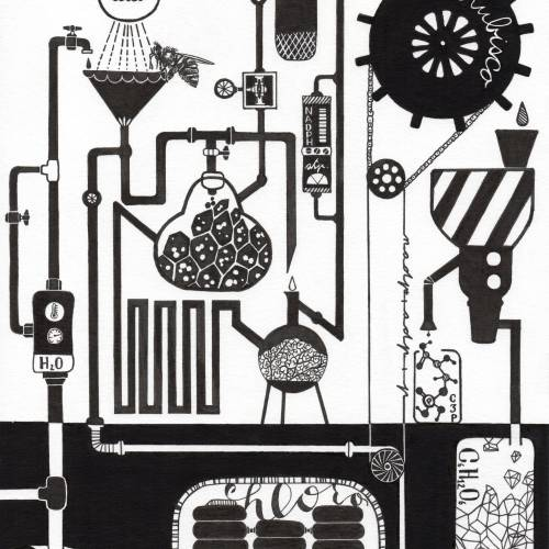 Black and white drawing show Photosynthesis in a meadow similar to Chemical factory with chemical reactions, stills and gears